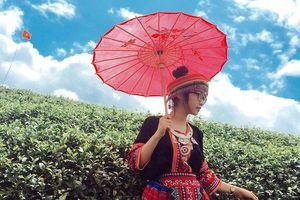 Homestay nào ở Mộc Châu rẻ, đẹp và tiện đường khám phá trong dịp Tết?