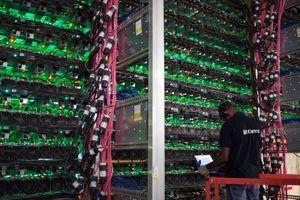 Nhiều hãng đào bitcoin phá sản, đóng cửa vì giá tiền mã hóa rớt thảm