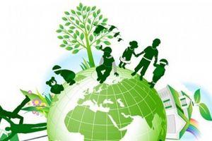 Khung lý thuyết về mô hình liên kết của các tổ chức xã hội ở Việt Nam