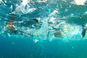 Điều gì xảy ra với các rác thải trên đại dương?