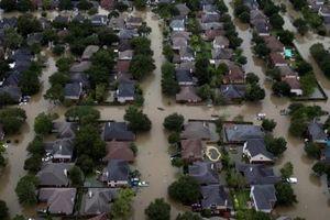 Mỹ: Mất hàng trăm tỷ USD vì biến đổi khí hậu