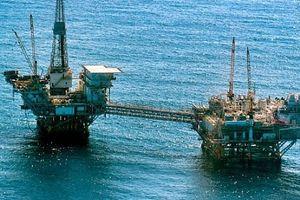 OPEC lên kế hoạch cắt giảm sản lượng dầu 'một cách lặng lẽ'