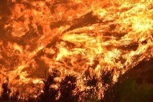 Cháy rừng Camp Fire (Mỹ) được khống chế nhưng lại có nguy cơ mới