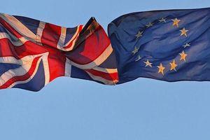 EU chính thức thông qua thỏa thuận Brexit và Tuyên bố chính trị về Anh