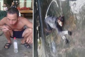 Xác định được nhóm đối tượng giết khỉ ăn óc sống rồi phát trực tiếp lên facebook