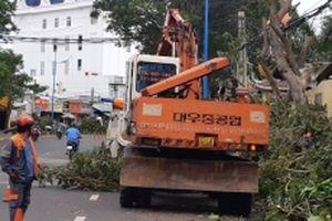 Bà Rịa - Vũng Tàu và Ninh Thuận ổn định cuộc sống người dân sau bão số 9