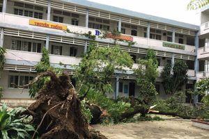 Học sinh của 2 trường tại TPHCM nghỉ học vào ngày mai (27/11)