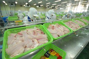 Hết độc quyền, cá tra Việt vẫn đầy lợi thế