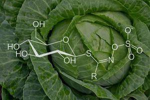 Bất ngờ với những lợi ích của bắp cải