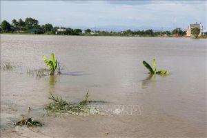 Huyện Bắc Bình, Bình Thuận vẫn ngập nặng do mưa lũ