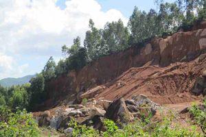 Bình Định: Doanh nghiệp phá tan hoang phía Nam núi Hòn Chà, trách nhiệm cơ quan chức năng ở đâu?
