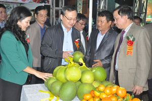 Cơ hội quảng bá, giới thiệu và kết nối cung - cầu nông sản tại Hưng Yên