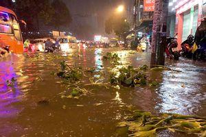 Hàng loạt trường tại TP Hồ Chí Minh cho sinh viên nghỉ học