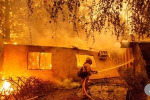 Cháy rừng California đã được khống chế hoàn toàn