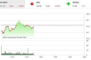 Phiên sáng 26/11: Nhà đầu tư đứng nhìn, thị trường chưa thể gượng dậy