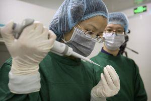 Trung Quốc điều tra cuộc thí nghiệm tạo em bé biến đổi gen