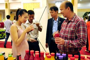Nông sản Hòa Bình, Lâm Đồng: Loay hoay tìm chỗ đứng trên thị trường Hà Nội