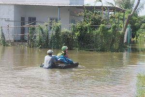 Hết mưa, bão, TP. Phan Rang-Tháp Chàm vẫn chìm sâu trong nước lũ