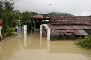 Khánh Hòa: 2 đợt mưa lũ 'cuốn trôi' 396 tỉ đồng