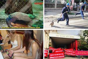 Tin tức Hà Nội 24h: Danh sách tuyến phố nhạy cảm, 'sung sướng' ở Thủ đô 'bỏ lọt' phố Trần Duy Hưng