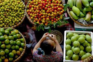 80% nông sản Việt bán ra thế giới 'sống tầm gửi' bằng thương hiệu nước ngoài