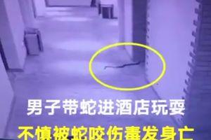 Gã trai dùng rắn độc cưỡng hiếp phụ nữ bị rắn cắn chết
