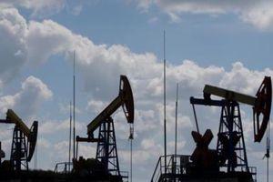 Sản lượng dầu của Saudi Arabia tăng cao đẩy giá dầu châu Á đi xuống