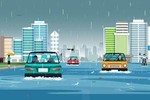 Sau trận bão số 9: Chủ xế khóc ròng vì bảo hiểm ô tô không bao gồm thủy kích