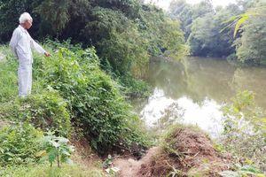 TP. Huế: Sông Bạch Yến sạt lở, dân bất an