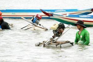 Hải sản cạn kiệt, ngư dân Cà Mau mong sớm áp dụng Luật Thủy sản