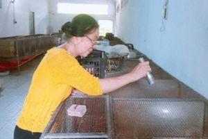 Về hưu nuôi chồn hương cho ăn chuối chín, bán giá 5 triệu đồng/cặp