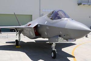 Nhật có thể mua thêm 100 máy bay chiến đấu F-35