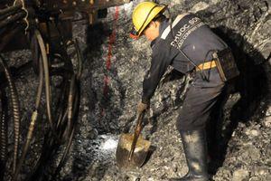 Doanh nghiệp 24h:Vàng Bồng Miêu chính thức phá sản, để lại số nợ gần 1.000 tỷ đồng