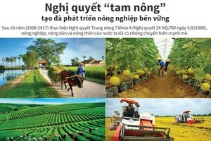 Nghị quyết 'tam nông' tạo đà phát triển nông nghiệp bền vững