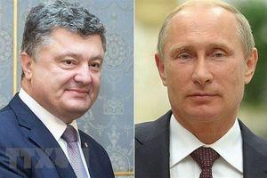 Điện Kremlin: Tổng thống Putin từ chối đề nghị điện đàm của Ukraine