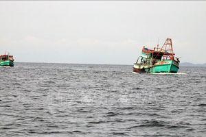 Cử tri Phú Yên kiến nghị về gói tín dụng linh hoạt cho khai thác hải sản xa bờ