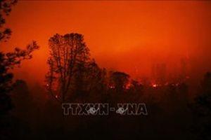 Sơ tán khẩn cấp hàng nghìn người tại Australia do cháy rừng