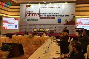 Hội nhập CPTPP: Doanh nghiệp rất dễ 'dính đòn' vì thiếu hiểu biết