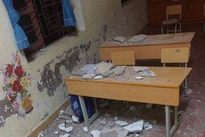 Hải Phòng: Vữa trần phòng học rơi trúng đầu, 3 em học sinh lớp 1 nhập viện cấp cứu