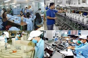 Vào CPTPP, doanh nghiệp Việt hãy 'đào mỏ vàng' thị trường nội trước