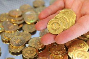 Giá Bitcoin hôm nay 28/11: Vẫn chưa mò thấy đáy, nhà đầu tư 'bỏ của chạy lấy người'