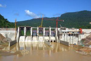 Xây dựng điện 1 (PECC1) bán đấu giá Nhà máy thủy điện Sông Bung 5