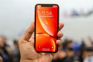 Apple: 'iPhone XR là smartphone bán chạy nhất của chúng tôi'