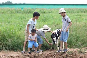 Phát triển nông nghiệp du lịch theo mô hình nông trại chia sẻ Sharefarm
