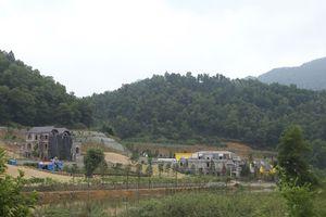 Phó thủ tướng yêu cầu thanh tra toàn diện việc quản lý, sử dụng đất rừng ở huyện Sóc Sơn