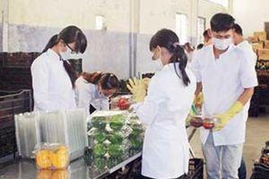 Đưa rau vào nhà kính, Anh Đào thu 600 triệu đồng/ha