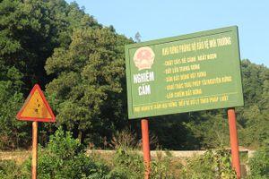 Hà Nội chưa cưỡng chế công trình vi phạm trên đất rừng xã Minh Phú, Sóc Sơn