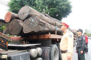 CSGT Quảng Nam bắt 4 xe container chở hàng chục cây gỗ khủng trên QL1