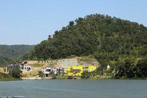Yêu cầu thanh tra toàn diện việc quản lý, sử dụng đất rừng ở huyện Sóc Sơn