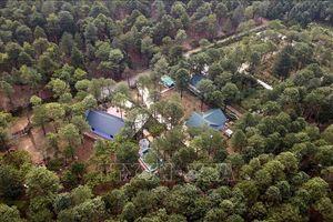 Thanh tra toàn diện việc quản lý, sử dụng đất rừng ở huyện Sóc Sơn